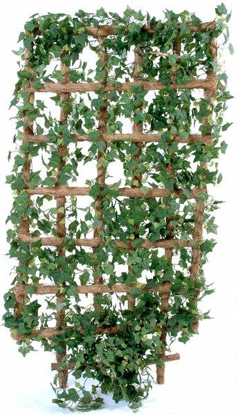 Page almanach septembre 2014 for Jardiniere pour plante grimpante